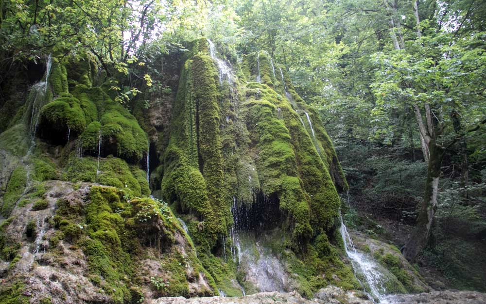 Moss-or-Mamirli-waterfall